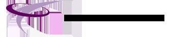 Bauer Consult Logo